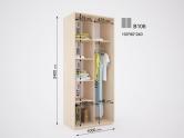 Шкаф-купе 2-х дверный ДОМ В106 (ширина 100 см)